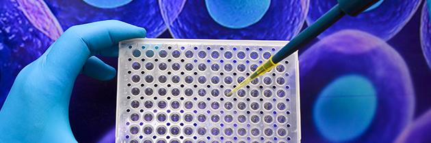 Investigação descobre como produzir células da tiroide