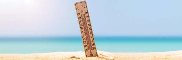 Hipertiroidismo: intolerância ao calor e hipersudação.